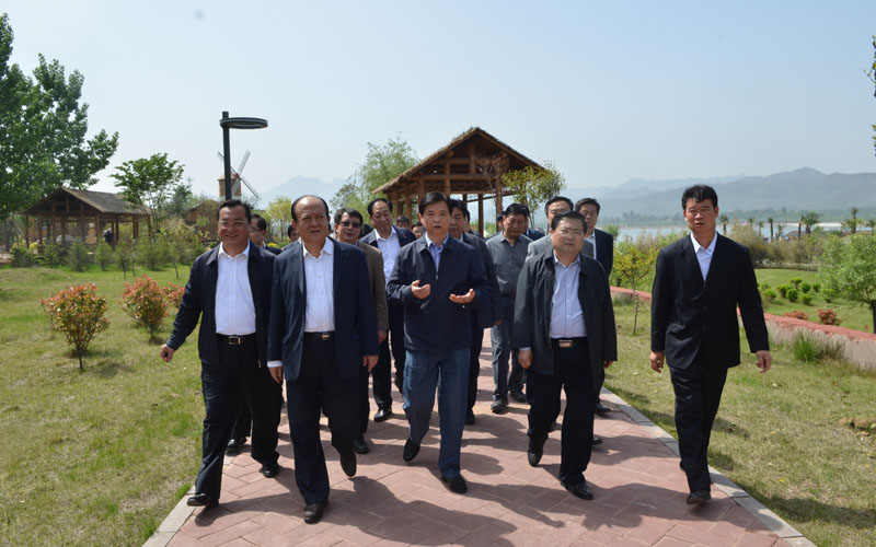 杨汭副省长,回建市长视察